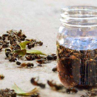 Экстракт пчелиного подмора